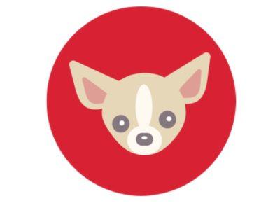 Tiny_Dogs__Tiny_Fares____Virgin_America
