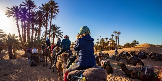 New York, Boston, Los Angeles to Marrakesh (Morocco) from $466 round-trip