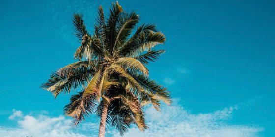 Summer via Delta! Newark, Miami, Charlotte, Washington DC, Dallas, Houston to Belize from $232 R/T