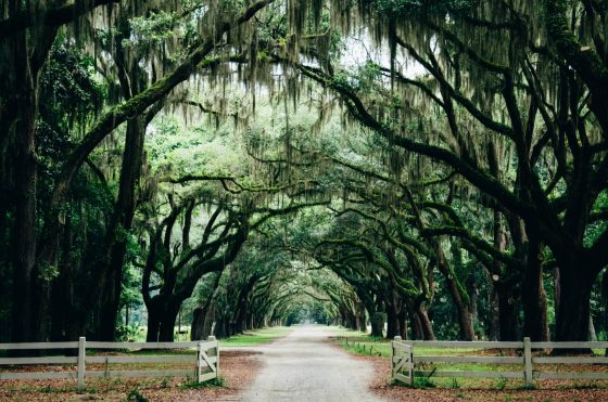 Nonstop! Chicago and Newark to Savannah, Georgia for $97 R/T